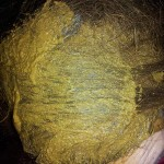 arte-d-erbe-come-tingere-i-capelli