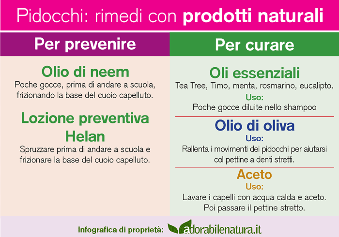 Vermi intestinali intestinali e supplementari
