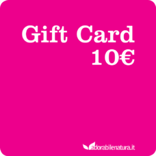 Gift Card 10 euro