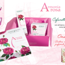Armonia Rosa Cofanetto – Amerigo