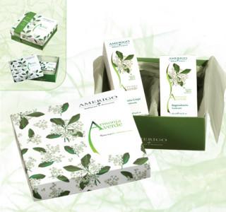 Amerigo-cofanetto-armonia-verde