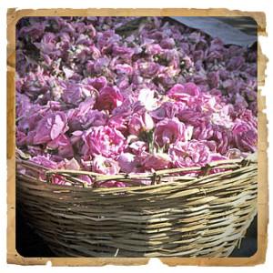 Erbe di Janas: Rosa Damascena in polvere maschera
